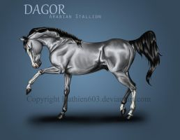 Dagor Reference by Hathien603