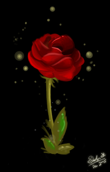 A Rose By Any Other Name by anonymous-phantom