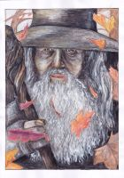 Gandalf, that's me by AluStaire