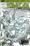 2015 SDCC TMNT Sketch Cover commission by fig