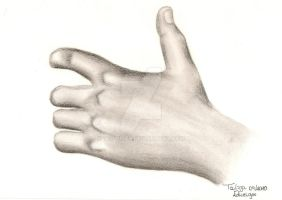 Hand Study by tedwiges