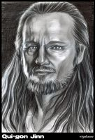 Master Qui-gon by Norloth