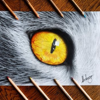 Cat eye  by almberger