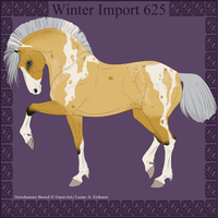 Winter Import 625 by ThatDenver