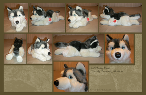 .: Huge Husky Plush :. by Dunkin-Prime