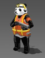 Character - Don't Mess With Panda by longgi