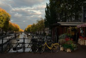 Amsterdam by somebody3121
