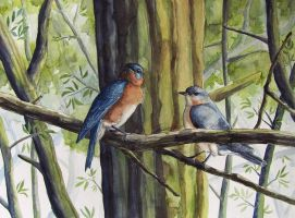 Bluebirds by Tales-of-Torment