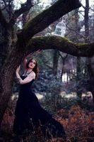 The Spell by Cindy-C-Photography
