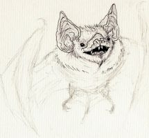 Bat sketch by IgorSan
