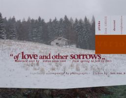 VSR_10_of love and other sorrows by screenscan