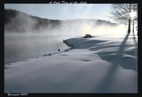A Cold Day at the Lake by yamiyalo