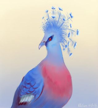 Vicotrian Crowned Pigeon by SailingBreezes