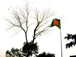 Bangladesh by cookiesnbubbles