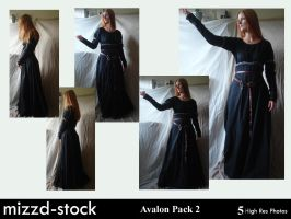 Avalon pack 2 by mizzd-stock