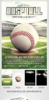 Baseball Game flyer template by saltshaker911