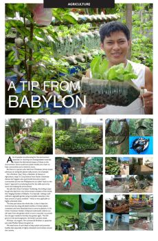 Article Layout by rosslee