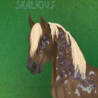 Skalious by SilverBrooke-Stables