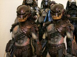 Hot Toys Berserker Predators by ShadowPredator2012