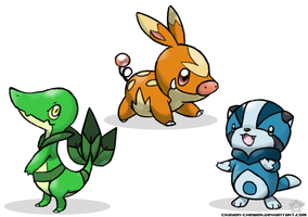 5th Gen Starter Guess? by crayon-chewer