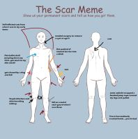 The Scar Meme by akchrome