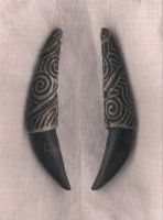 Dire Wolf Tooth Pendant by DonSimpson