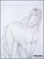 Horse by LOVE--WING