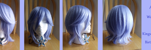 BBS: Aqua Wig and Wayfinder by Possessed-Puppet