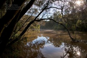 The River by FireflyPhotosAust