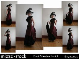 Dark Mansion Pack 1 by mizzd-stock