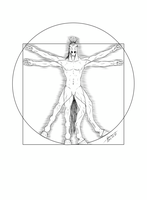 The Vitruvian Horse (AC #115) [lineart version] by Storm-Engineer