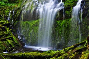 Proxy Falls, Study 2010-3R by greglief