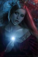 The Star of Elendil by AF-studios