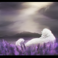 [ Exp. ] - Lavender Edge by Lachtaube