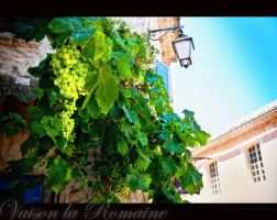 Vaison la Romaine 5 by calimer00