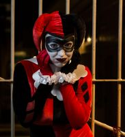 Harley Quinn 10/13/13 by Tsukihime2010
