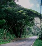 Road to Iao by jbritz22