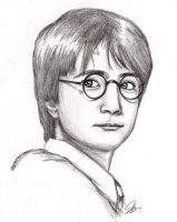 Harry Potter: Daniel Radcliffe by celeste