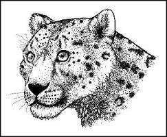 Paint Snow Leopard by RedStitches