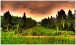 The Hill To Heaven HDR by DragonRichard