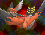 Talonflame by Macuarrorro