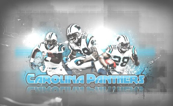 Panthers 2008 by metalhdmh