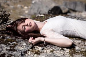 Sleeping in the sun by lakehurst-images