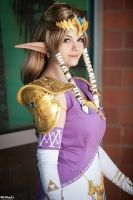 Twilight Princess: Wisdom by rynoki