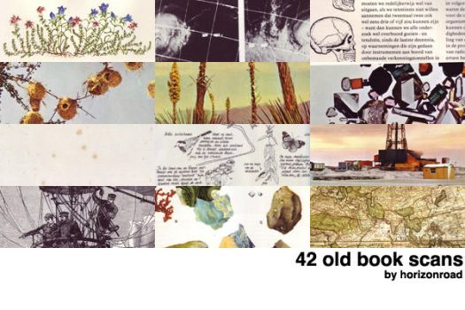 scans_old_books_2 by horizonroad