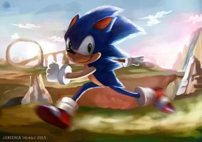 Run.. Run... Runnn Hedgehog! by jorcerca