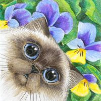 Himalayan Kitty with Pansies by bigcatdesigns