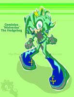 Geminius new design-SR Style by Fantailed-Hedgehog