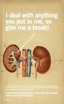 Alcoholism Poster - Kidneys by affatto