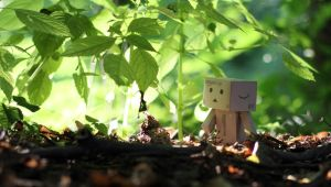 Danbo loves green by lightlanaskywalker